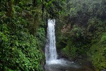 Jardins da Cachoeira de La Paz, Vara Blanca, Costa Rica