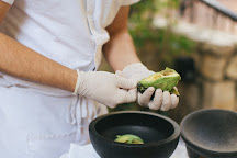 SA Food Tours, San Antonio, United States
