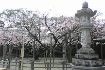 Miyajidake Shrine, Fukutsu, Japan