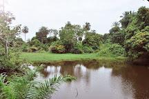 Abuko Nature Reserve, Banjul, Gambia
