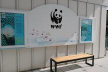 Hoi Ha Wan Marine Park, Hong Kong, China