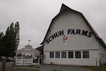 Schuh Farms, Mount Vernon, United States