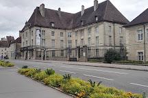 Musee des Beaux-Arts de Dole, Dole, France