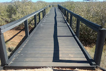 One Mile Jetty, Carnarvon, Australia