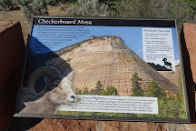 Checkerboard Mesa, Zion National Park, United States