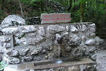 Waterfall Savica, Bohinjsko Jezero, Slovenia