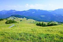 Triassic Park, Waidring, Austria