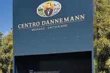 Centro Dannemann, Brissago, Switzerland