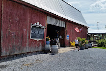 Cayuga Ridge Estate Winery, Ovid, United States