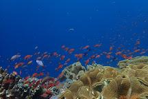 Discover Nusa Penida, Nusa Penida, Indonesia