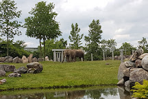 Granby Zoo (Zoo de Granby), Granby, Canada