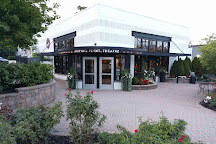 Tipping Point Theatre, Northville, United States