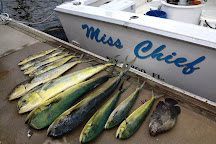 Miss Chief Fishing Charters, Key Largo, United States