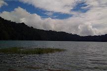 Tamblingan Lake, Buleleng, Indonesia