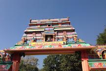 Velliangiri Mountains, Coimbatore, India
