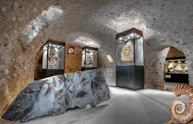 Paleo-Galerie