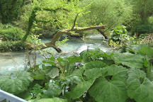 The Blue Eye - Syri i Kalter, Vlore County, Albania