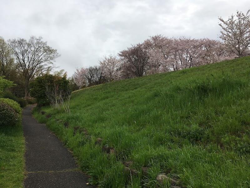 八幡山公園 石のモニュメント