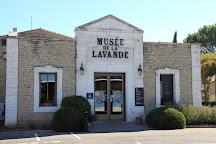 Musee de la Lavande, Coustellet, France