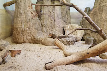 Prospect Park Zoo, Brooklyn, United States