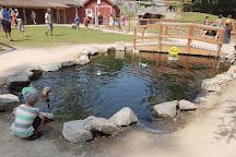 Kangaroo Creek Farm, Lake Country, Canada