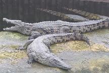 La Planete des Crocodiles, Civaux, France