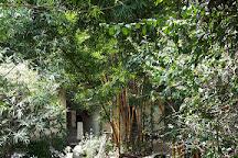 Thosamling Nunnery, Dharamsala, India
