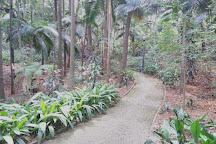 Tenente Siqueira Campos Park (Trianon), Sao Paulo, Brazil