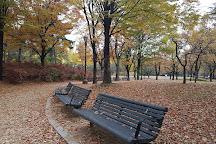 Yeouido Park, Seoul, South Korea