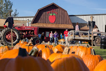 Deal's Apple Orchard, Jefferson, United States