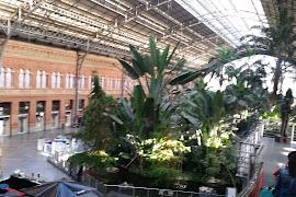 Автобусная станция  Atocha