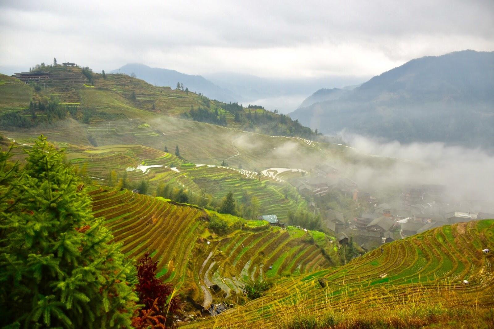 Longji Rice Terrace Scenic Spot