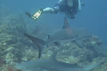 Felipe Diving Center, Providencia Island, Colombia