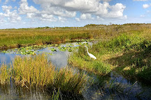 Everglades National Park, Florida City, United States