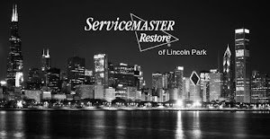 ServiceMaster of Lincoln Park