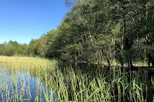 Jezioro Drawsko, Czaplinek, Poland