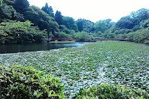 Mobara Park, Mobara, Japan
