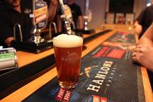 Hanlons Brewery, Newton Saint Cyres, United Kingdom