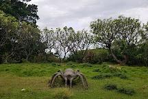 Pua Mau Place Arboretum & Botanical Garden, Kawaihae, United States