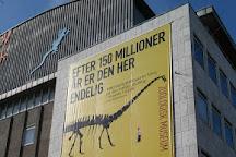 Zoological Museum, Copenhagen, Denmark