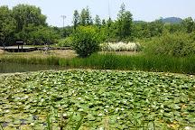 Incheon Grand Park, Incheon, South Korea