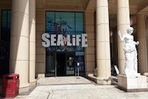 Sealife Manchester, Stretford, United Kingdom