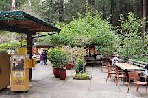 Mystery Spot, Santa Cruz, United States