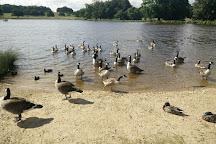 Richmond Park, Richmond-upon-Thames, United Kingdom