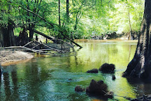 Lynches River County Park, Effingham, United States