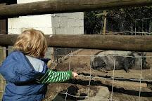 Hopefield Animal Sanctuary, Brentwood, United Kingdom