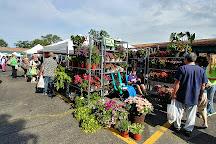 Bank Street Farmer's Market, Kalamazoo, United States