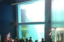 Macduff Marine Aquarium, Macduff, United Kingdom