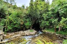 Spellbound Glowworm & Cave Tours, Waitomo Caves, New Zealand