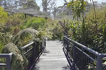 Cleland Wildlife Park, Crafers, Australia